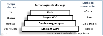 Stockage ADN